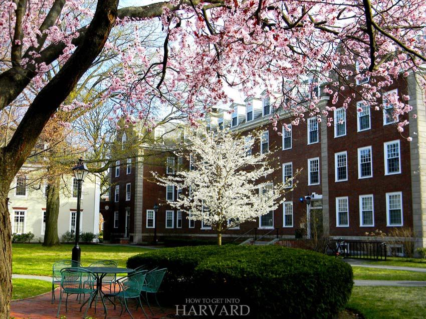harvard-business-school-dorms-admissions-campus-university