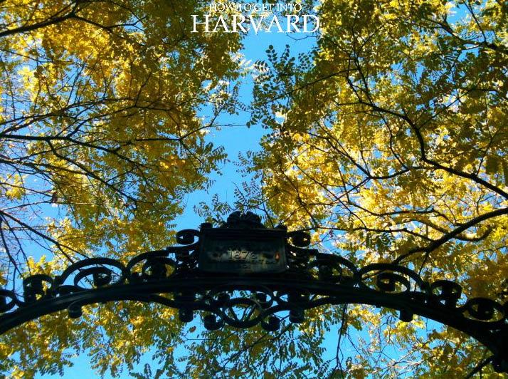 Harvard-Application-Process-basics-beginners-university-admissions