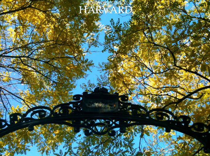 Harvard-Application-Process-basics-beginners-university-admissions