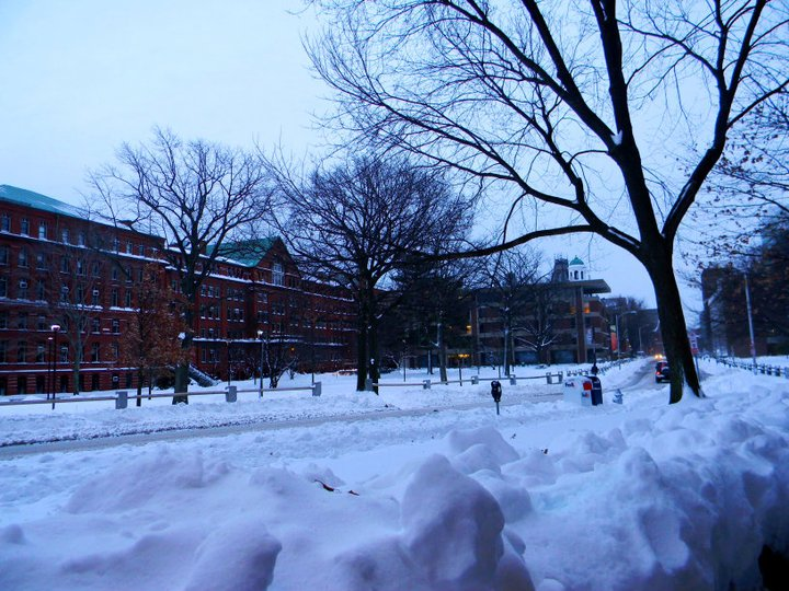 harvard university admissions courses masters dorm gsas